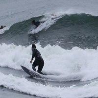 『北浜』 浪