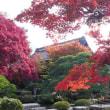 信州須坂 豪商の館 田中本家博物館の紅葉