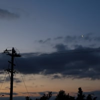 4月23日、早朝の金星と細い月と。
