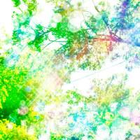 風の中、リスの声_160427