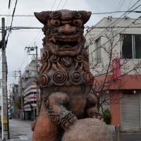 沖縄・ちるだい3月最終回 壺屋で雨の散歩・・写真25枚