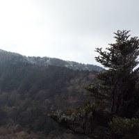 平成29年2月24日の霧氷