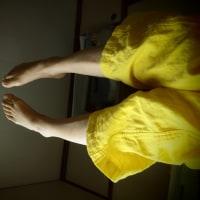 今年は黄色