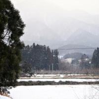 17-02-19 小雪