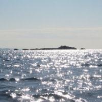 きらきら海でパドリング