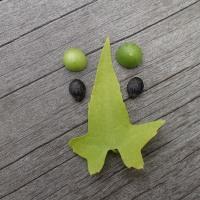 今日の浮島ケ原自然公園:ゴキヅルの葉と実で造った顔
