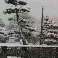 大雪の降る町