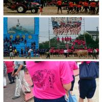 文化祭に体育祭