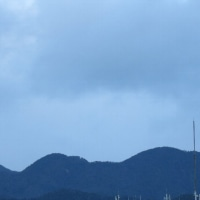 朝のウォーキング 堀川+仁丹ウォッチング 一條通 復習