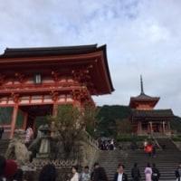 京都へ行ってきました。