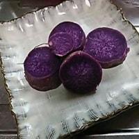 紫芋(🍠さつま芋)