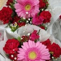 1月17日 明日の誕生花・ゆかりの花 花言葉は?(*^O^*)☆