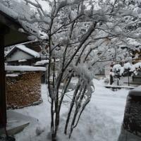 飛騨高山雪