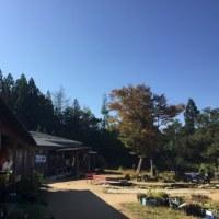 農家レストラン ぶどう園