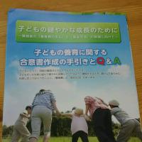 いいことやけど、先を越されちまったなあ...@離婚する方を対象とした「養育手引書」の配布が始まりました!というお話。