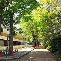 初夏の東京都農林総合研究センター