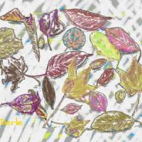 風に舞う木の葉を集めて