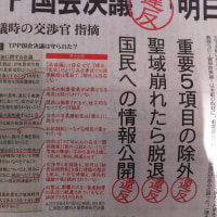 TPP国会決議違反「明白」  日本政府交渉官,明治大学農学部 作山巧准教授