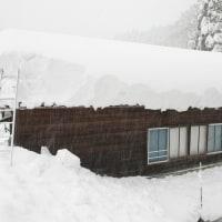 140センチ越え、本屋根も雪降し。