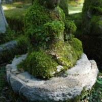 緑の衣を着た石仏