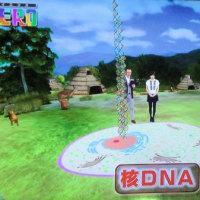 縄文人の核DNAが解析された