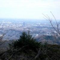 早春の高尾山・・・by ウォン