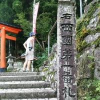 那智の滝~南紀白浜・高野山・奈良市内観光へ