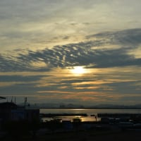まち歩き滋賀0208  琵琶湖 朝の浜大津港