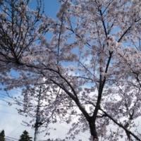 富士霊園タンデムツーリング