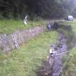 協働作業 河川草刈り作業