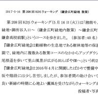 5/16 5月度KDSウォーキングのご報告