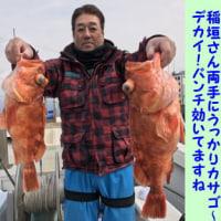 3/25の釣果