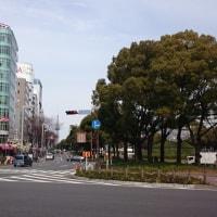 名古屋おじ散歩