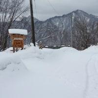 真冬の景色(北海道沙流郡日高町日高地区)