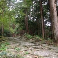三重県尾鷲市 熊野古道へ
