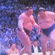 大相撲名古屋場所 ぼくの星取り予想はどうだったか