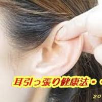 「耳」引っ張り健康法・・・