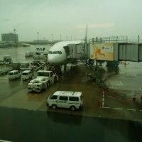 今日の東京は雨