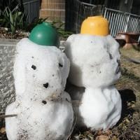 1月20日(水) 雪だるま~雪だるま~