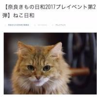 奈良きもの日和さん主催「ねこ日和」が開催されます! @nara_mise