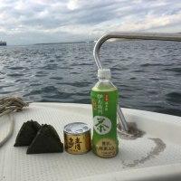 知多堤沖のサバとベラ