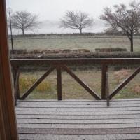 うゎ、ホントに雪になった。