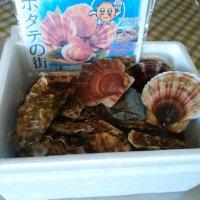 今日は帆立の刺身と蒸し牡蠣
