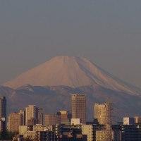 """きれいな""""富士山"""""""