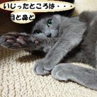 ◆プチ疑惑?◆