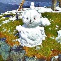 雪景色 - 嵐山 天龍寺