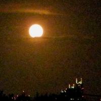 新宿高層ビルに十六夜