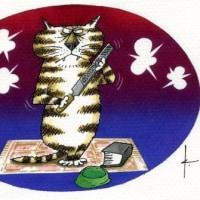 「アイエス」という猫ちゃん