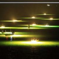 徳島 シラスウナギ漁
