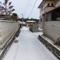 初雪、久しぶりに積もりました。思い出すのは、11年前の旭川。